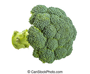 Brokoli - Brocoli