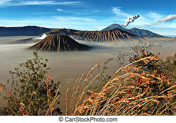bromo - Landscape of Volcanoes in Bromo mountain at Java, ...