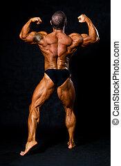 bronzeado, bodybuilder, mostra, músculos, de, braços, e, costas