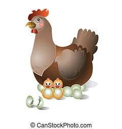 Broody hen with chicken on the white background