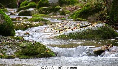 Brook Cascades in Fall Racking - Mediterranean River...