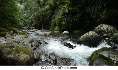 Brook downstream direction - White brook in the downstream ...