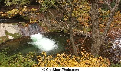 Brook falling step - Overlook autumn leaves and brook...