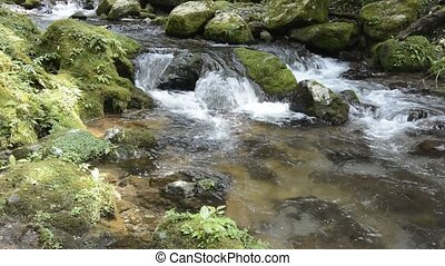 Brook flowing among mossy stone with sunshine filtering...