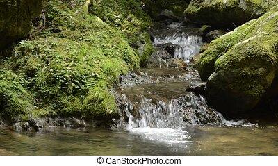 Brook flowing rock steps - Thin narrow brook flowing rock...