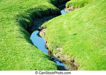 Brook - Small brook among fresh green summer grass