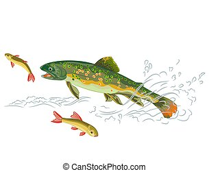 Brook trout predator catch a fish in the wild stream eps 8 vector