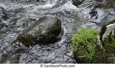 Brook with stones - Thin brook with green grass growing...