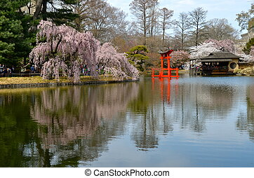 Brooklyn Botanic Garden, New York - Garden at the Brooklyn...