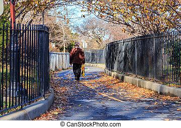 Brooklyn Park in Fall