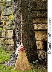 Broom against a tree