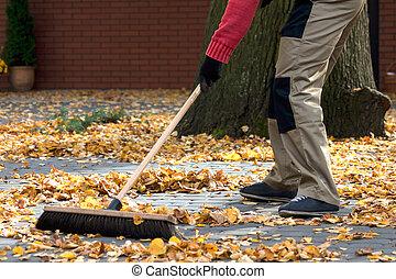 Brooming the leaves