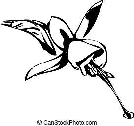 brote flor