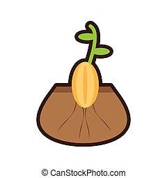 brote, planta, crecer, flourishes