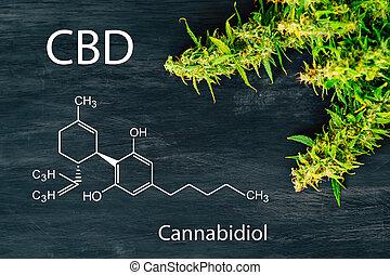 brotes, fórmula, cannabis, cannabidiol, cbd, psychoactive, no, marijuana
