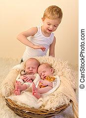 Brother loving newborn twins