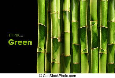 brotos bambu, empilhado, lado lado