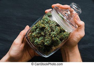 brotos, cima., legalizing, marijuana., weed., mãos, cannabis, fresco, banco, lote, conceitos, fim, vista., topo, man.