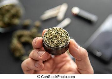 brotos, cima, moedor, marijuana, cannabis, erva daninha, pretas, conjunto, fim, fresco, mão, tabela