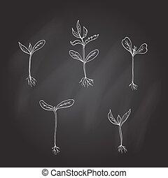 brotos, jovem, plants., mão, desenhado