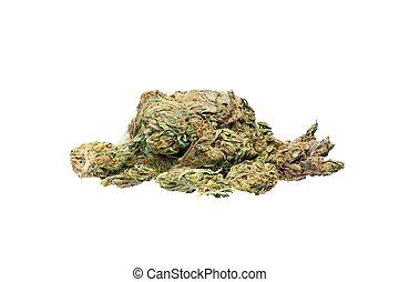 brotos, médico, marijuana, isolado, experiência., branca