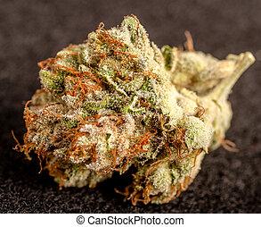 brotos, marijuana