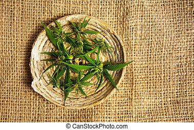 brotos, prato, planta, marijuana, madeira