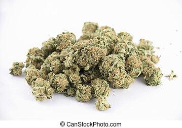 brotos, strain), detalhe, isolado, cannabis, (mango, sopro, branca