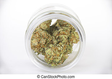 brotos, tangie, cannabis, (sour, strain), jarro, isolado, vidro, branca