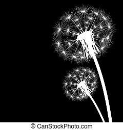 brotos, voando, silueta, dandelion