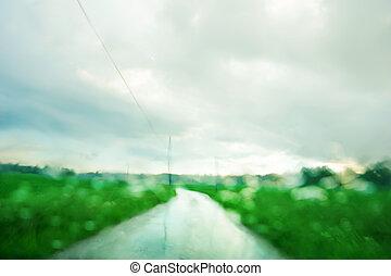 brouillé, vert, été, paysage