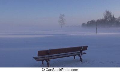 brouillard, arbre, solitaire, hiver, parc