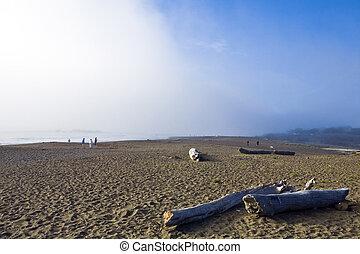 brouillard, cambria, banque