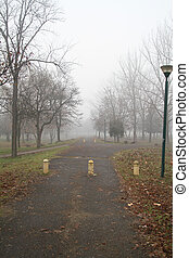 brouillard, parc