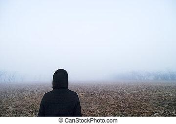 brouillard, promenade