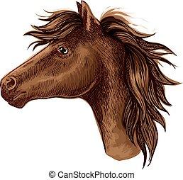 Brown arabian horse animal head
