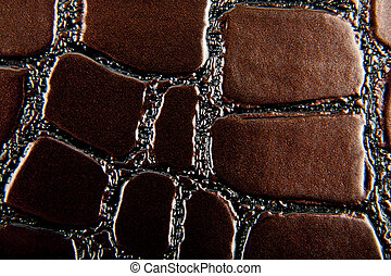 brown background from a skin