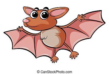 Brown bat on white background