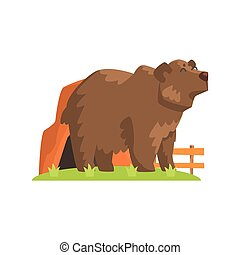 Brown Bear Coming Out Of Bear Den Standing On Green Grass Patch In Open Air Zoo Enclosure
