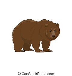 Brown bear, hunt and zoo wild animal