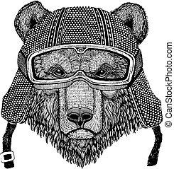 Brown bear Russian bear Animal wearing motorycle helmet....
