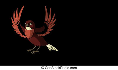 Brown Bird Came Flying. Animated Motion Graphic with Alpha Channel.