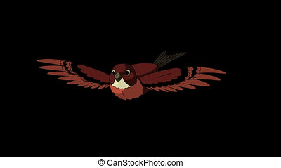 Brown Bird Flies. Front View. Animated Looped Motion Graphic...