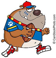 Brown Bulldog Football Player