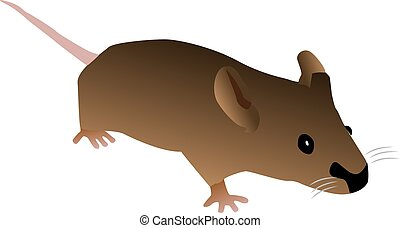 Brown cartoon mouse isolated on a white background.