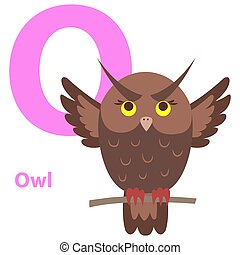Brown Cartoon Owl on Character O Educational Card