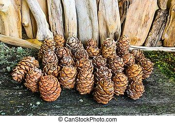 Brown cedar cones on a wooden background