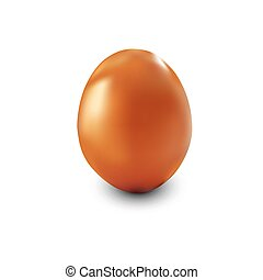 brown chicken egg - Single brown chicken egg isolated on...