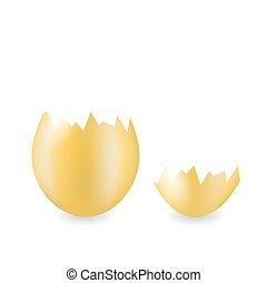 Brown Chicken Eggshell