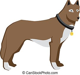 brown dog isolaterd on white background, straight standed dog